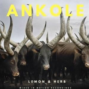 Lemon - Ankole ft. Herb